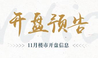 上海11月份开盘预告