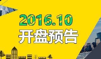 2016年10月武汉开盘预告