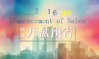 2016年11月武汉开盘预告
