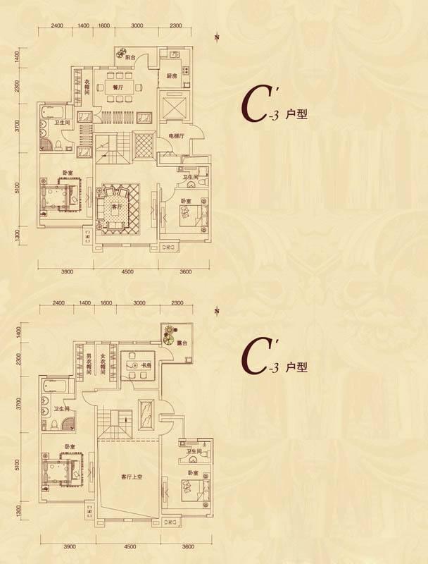 复地东山国际平墅C'3户型4室2厅3卫2厨