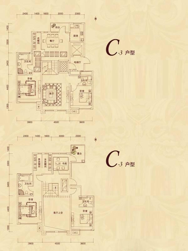 复地东山国际平墅C3户型5室3厅1卫1厨